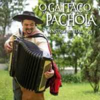 O Gaitaço Do Pachola, Instrumental Vol.1